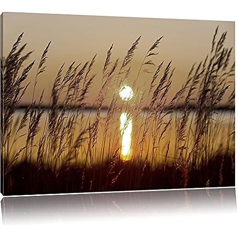 Erbe al tramonto nero / bianco, dimensioni: 120x80 su tela, XXL enormi immagini completamente Pagina con la barella, stampa d'arte sul murale con telaio, più economico di pittura o un dipinto a olio, non un manifesto o un banner,