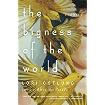 The Bigness of the World: Stories