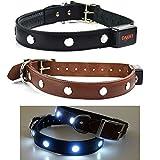 LED Hundehalsband aus ECHTEM LEDER BRAUN M (40-45cm) Top Qualität Leuchtendes Sicherheits Hundehalsband