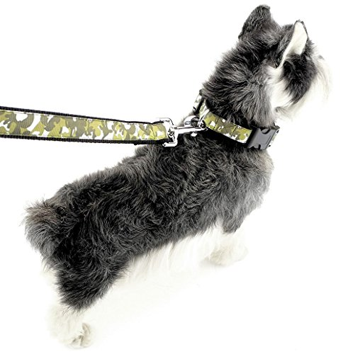 Pegasus Camouflage Nylon Pet Medium Große Hunde Halsband Leine Set Walking führt verstellbar