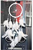 Helper007 Handmade Dream Catcher Net With feathers Wall Hanging Decorations 1 Piece White