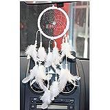 VANKER Hecho a mano ideal del colector circular neto con las plumas colgar de la pared del coche de la decoración del arte Blanco