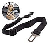 LANIAKEA Dog Seat Belt Clip Universal Pet Seat Belt Lead Attachment for Cars UK Bungee Adjustable Durable Nylon Leash Restraint Harness Black -Could Possibly Save Pets Life