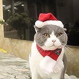 EXPAWLORER Weihnachtskostüm, Weihnachtsmütze, mit Schal für Mini-Hunde, Welpen, süßlich und warm