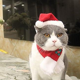 EXPAWLORER Gato de Navidad Disfraz de Papá Noel Sombrero Bufanda para Perros pequeños Cachorro, Adorable y cálido