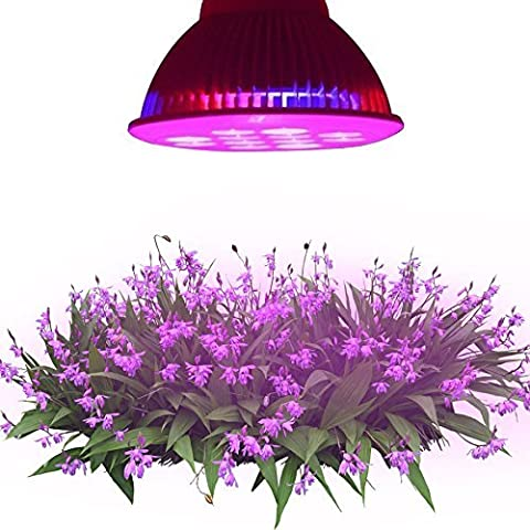 Derlight E27 36W 8 Red 4 Blue LED Plant Grow Light Bulb for Hydroponic Garden and Greenhouse (36W)