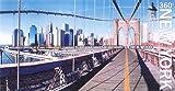 New York (360 Degrees World)