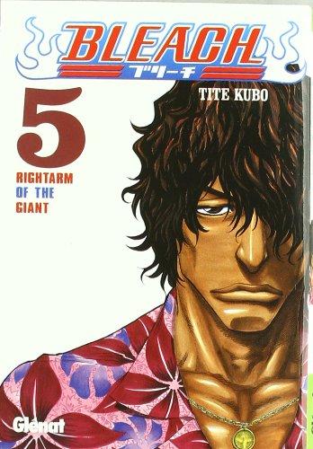 Bleach 5 (Shonen Manga)