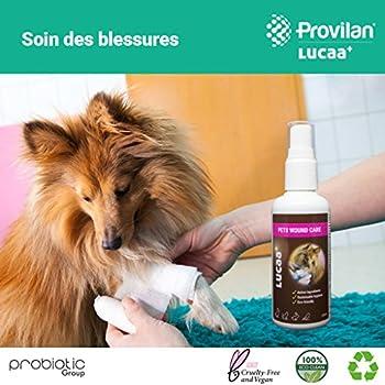 Nettoyant Blessures/Plaies Chiens et Chats 100ml | Cicatrisant pour Blessures aux Probiotiques | Bio, Vegan & Naturel