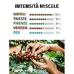 FRHOME-Lavazza-a-Modo-Mio-100-Capsule-compatibili-Il-Caff-Italiano-Kit-Degustazione-Tour-dItalia-con-varie-intensit