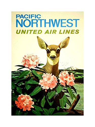 united-airline-pacific-northwest-deer-vintage-advert-framed-art-print-picture-mount-f12x1528
