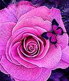 Barlingrock 5D Collé DIY Diamant Peinture pour Adultes, Papillon Kiss Rose Peintures Strass Strass Collé Partielle Perceuse Broderie Point De Croix Artisanat pour Salon Chambre Home Wall Decor-12x12