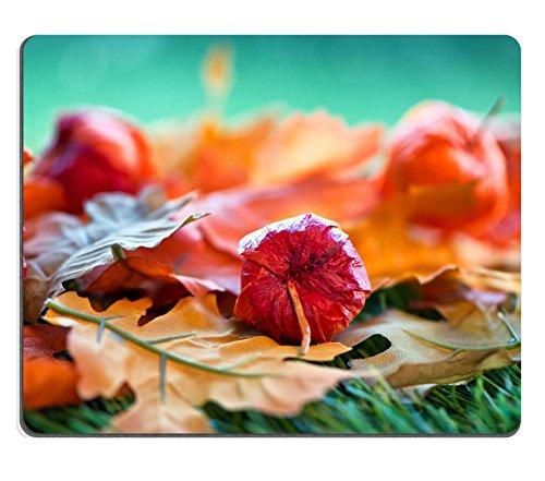 luxlady-de-goma-natural-mousepads-imagen-id-31685993-todavia-vida-de-chino-farol-seed-pods-y-hojas-d