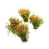 MagiDeal 4pcs Landschaft Landschaftsmodell Bodendecker Blumen Modell Orange Gelb