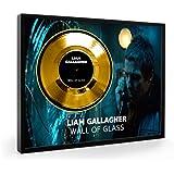 Liam Gallagher Wall Of Glass Framed Goldene Schallplatte Display (C1)