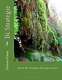 Bi Strategie: Keine Bi strategie ohne governence by Gernot Kaiser (2015-02-25)