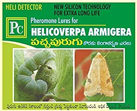 Pheromone Trap with Lure for Helicoverpa armigera Complete Set