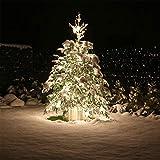 LED Lichterkette groß LEDLK600 60 Meter 600 LEDs für Weihnachtsbaum Weihnachts Baum