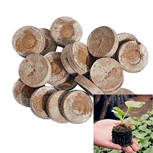 Jiffy Granulés de graines de compost Plug Start semis, l'intérieur facile au Greffe au jardin (50ct - 25 mm)