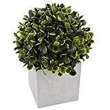 Pflanze Buchskugel Deko Kunstblume 19x17x17cm grün Trend Floral Design