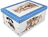Unbekannt Aufbewahrungsbox Katzen Neu Stabiler Karton 51x37x24cm - Blau