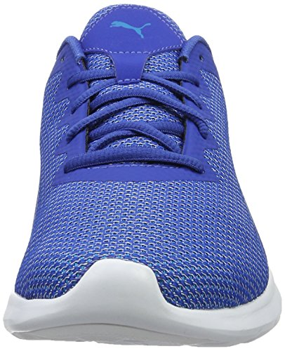 Puma Herren Vigor Laufschuhe, 40 EU Blau (true blue-blue danube 01)