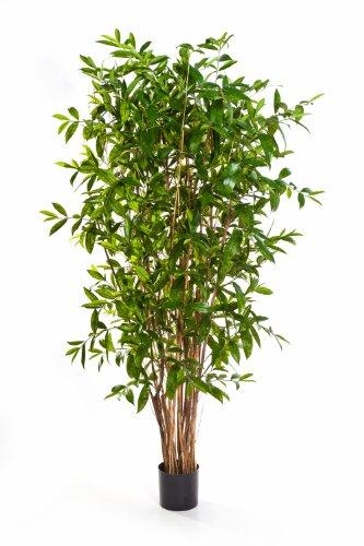 Künstliche Dracaena Surculosa SIMBA, 2620 Blätter, grün, 270 cm – Kunstpflanze / Dracena künstlich