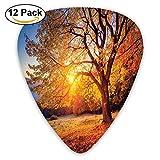 Big Majestic Autumn Tree Shedding Faded Leaves On Hill Slop Season Landscape Guitar Picks 12/Pack