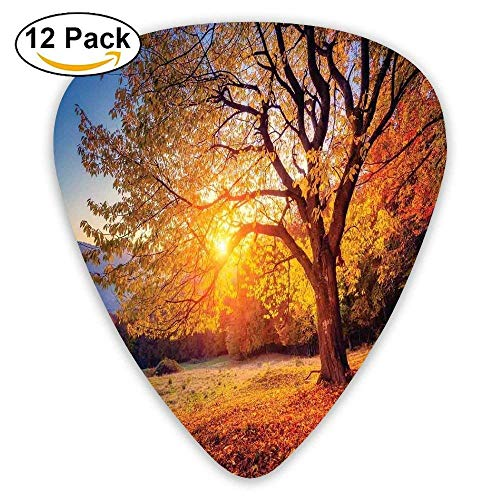 Big Majestic Autumn Tree Shedding Faded Leaves On Hill Slop Season Landscape Guitar Picks 12/Pack - Mission Hills Collection