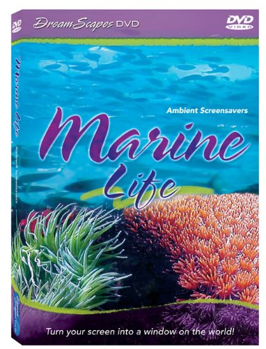 marine-life-by-dreamscapes