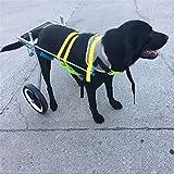 Verstellbarer Hunde-Rollstuhl - Für Große Hunde 66-110 Lbs - Rückenhöhe 21.65-26.77 Zoll Hüftbreite 10.24-15.75 Zoll - Rollstuhl Für Hinterbeine XL