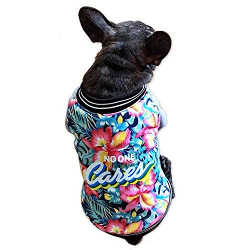 FGDSSE Mops Kleidung französische Bulldogge Kostüm Pudel als Bär Schnauzer Gree Jacke Jacke Winter Hund - Bär Kostüm Für Hunde