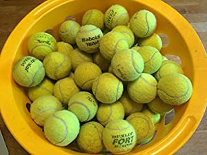 NEW 10 X Top Quality Yellow Tennis Balls Ideal For Golden Retriever Dogs Review 2018