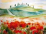 Artland Qualitätsbilder I Wandbilder Selbstklebende Wandfolie 40 x 30 cm Landschaften Europa Italien Malerei Rot B1TW Toscana