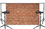 PB Zone 150cm x 210cm Abstrakte Fotografie Hintergrund Requisiten Kreative rote Backstein Wand Studio Hintergrund