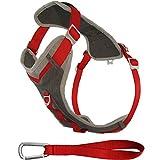 Kurgo Journey (TM) Dog Running Geschirr, Hundegeschirr, Walking Hund Wandern Geschirr, Hundegeschirr, Large, grau/rot
