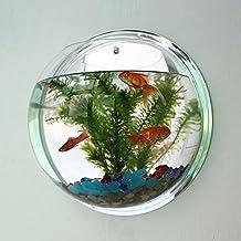 Wall Mounted Bowl Fish Tank Acrylic Creative Vase Aquarium Plant Decoration Pot for Home Office (L)