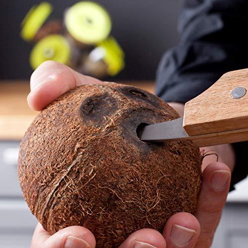 Kokosnuss Öffner Tomorrow's Kitchen - 4653560 Kokosnussöffner