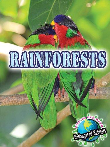 Rainforests (Eye to Eye With Endangered Habitats)