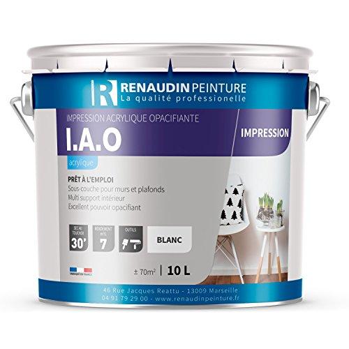 renaudin-peinture-114122-iao-impression-acrylique-mur-plafond-interieur-exterieur-opacifiante-blanc-