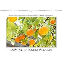 Emotionale Momente: Andalusien Costa de la Luz / CH-Version (Wandkalender 2018 DIN A2 quer): Europas Landschaften – Andalusien Costa de la Luz. Ein ... (Monatskalender, 14 Seiten ) (CALVENDO Orte)