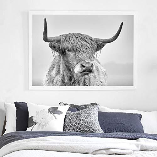 YCOLLC Retrato En Blanco Y Negro De Una Vaca Highland Pósters E Impresiones De Lienzo Cuadros para Sala De Estar Nordic Wall Art Home Decor