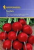 Sperli Gemüsesamen Radieschen Saxa 3