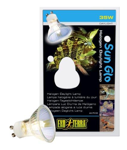 Schildkröte 5 Light (Exo Terra Sun Glo Halogen-Tageslichtlampe 35W)