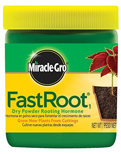miracle-gro-100645-fast-root-dry-powder-rooting-hormone-jar-1-1-4-ounce-by-miracle-gro