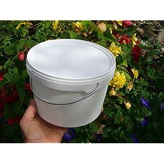 simonthebeekeeper 6 x Beekeepers 1/2 Gallon CONTACT FEEDERS 18