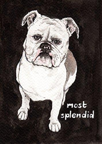 old-english-bulldog-card-most-splendid-dog-greeting-card-birthday-card-with-lambert-the-olde-english