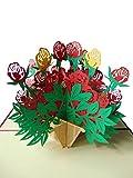 Pu40 Bezaubernde 3D Pop Up Karte mit Umschlag als Dankeschön, zum Geburtstag, zur Verlobung, zur Genesung, zum Jahrestag oder einfach nur als schöne Gutscheinkarte, filigranes Kunstwerk als Einladungskarte oder Glückwunschkarte zum Jubiläum, Blumenkarte