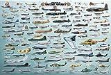 empireposter - Educational - Evolution of Military Aircraft - Größe (cm), ca. 91,5x61 - Poster, NEU - Text in Englisch