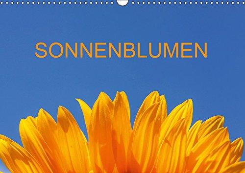 Sonnenblumen (Wandkalender 2019 DIN A3 quer): Fotografien von Sonnenblumen im Sommer (Monatskalender, 14 Seiten ) (CALVENDO Natur)